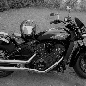 Black and White Version Scout Sixty
